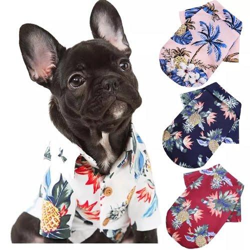 WceZr1TCrCNi3MpY895NZ9IGlYIwQNIp9dWaaQjl Trafoos Summer Beach Shirts for Dog Cute Hawaii Casual Pet Cat Clothing Floral T Shirt For Small Dogs Summer Beach Shirts for Dog