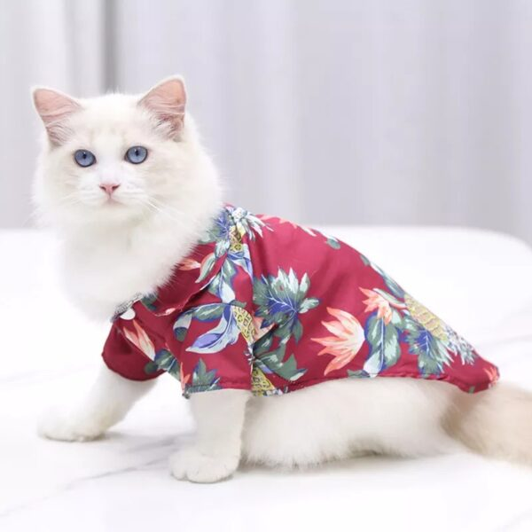 cM1l54GwOn2CtKKOcnKQsESwS7yo2NGSyWMPXqSK Trafoos Summer Beach Shirts for Dog Cute Hawaii Casual Pet Cat Clothing Floral T Shirt For Small Dogs Summer Beach Shirts for Dog
